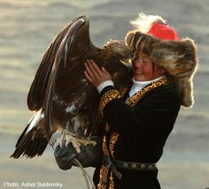 Ashol-Pan is the only known female golden eagle hunter in Mongolia. Among the Kazakh people of the Altai mountain range in western Mongolia,. Mongolia, Rapace Diurne, Eagle Hunting, Altai Mountains, Golden Eagle, Birds Of Prey, Golden Girls, Central Asia, Tibet