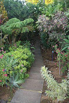 Botanical Gardens Kona Hawaii | ... Gardens In Hilo Area World Botanical  Gardens Www