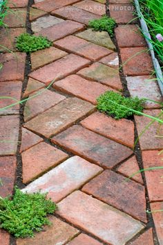 I feel a project coming on...pavers...garden...and I bet I will get a tan too!