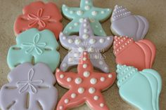 Sand dollar, starfish, and conch shell decorated sugar cookies