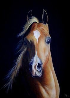 pinturas-caballos-oleo                                                                                                                                                      Más