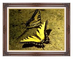 Framed Tiger Swallowtail Butterfly Photo to Canvas Painting Repro Fine Art Print