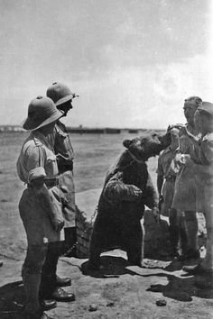 Wojtek was a Syrian brown bear cub found in Iran and adopted by… Wojtek Bear, Battle Of Monte Cassino, Military Working Dogs, Most Beautiful Animals, Bear Cubs, Brown Bear, World War Two, Historical Photos, Wwii