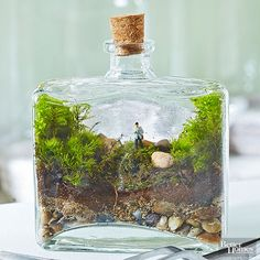 With the help of surgical tweezers and moss, this jar becomes a miniature version of a hike in the wilderness./