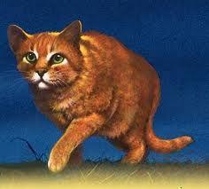 Firestar Archive 2 Warrior Cats
