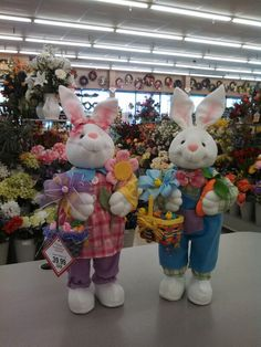 Some Bunny's Happy Easter, Easter Bunny, Resurrection Day, Easter Celebration, Spring Has Sprung, Diy And Crafts, Floral Design, Birthdays, Teddy Bear