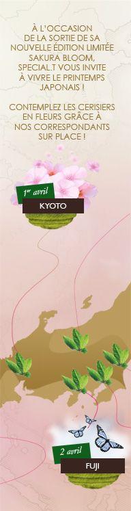 Follow the Hanami with SPECIAL.T Sakura Bloom, Cherry Blossom, Japanese, Invitations, Japanese Language, Save The Date Invitations, Cherry Blossoms, Invitation