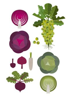 Cabbages, brussel sprouts, beetrot. Printable Kitchen Food Poster. $6.00, via Etsy.