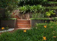 Raul de Souza Martins Residence, Petropolis, Brazil. Landscape designed by Roberto Burle Marx