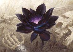 New alternate art Black Lotus painting by Chris Rahn sells for $16,099 on eBay http://www.examiner.com/article/new-alternate-art-black-lotus-painting-by-chris-rahn-sells-for-16-099-on-ebay #mtg