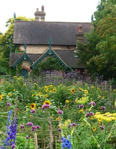 The cottage garden attracts beneficial insects and helps the bees :)