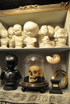 NAUTILUS MUSEUM: Antiques and Old Oddities in Turin, Italy! http://www.thenautilus.it/