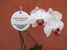 Cookie - Placa cerâmica com acabamento em pátina provençal