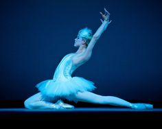 Carnival of the Animals Miami City Ballet