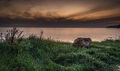 Green sunset. by vlassisd123