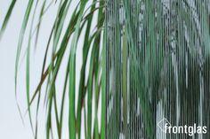 Cannes grau  www.frontglas.de #Glas #Glass