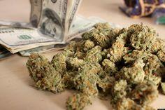 money and marijuana hbtv hemp beach tv 2015