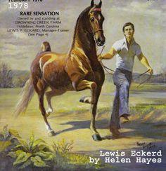 Rare Sensation  by Helen Hayes