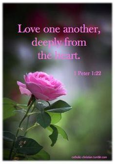 Quotes About Love  dailybibleverse365: 1 Peter 1: