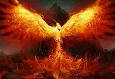Phoenix by Eedenartwork