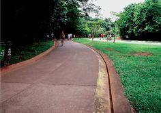 Parque Villa-Lobos - Decio Tozzi