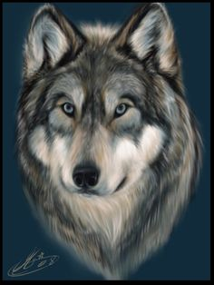 Nice painting of a wolf