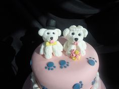 bichon frise dogs by The Little Village Cake Company, via Flickr