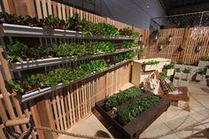 Ideas from Chicago Garden Show from Ball Publishing:  Grow your herbs, greens, and small vegetables in gutters mounted on a fence or wall, in a pallet lined with landscape fabric, or in cement blocks as a garden bed border.