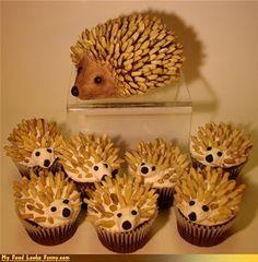 Porcupine cupcakes