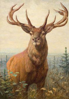 Carl Rungius (1869-1959) - Alert, oil on canvas, 83,8 x 58,4 cm.