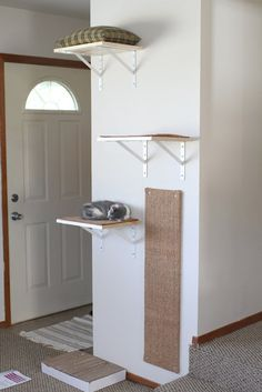 Cats Toys Ideas - DIY Shelves for Happy Active Kittens I need to do this for Charles, as he is not a fan of his kitty condo - Ideal toys for small cats Cat Climbing Wall, Cat Climbing Shelves, Cat Towers, Ideal Toys, Cat Enclosure, Cat Scratcher, Cat Room, Cat Condo, Small Cat