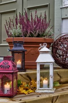Lyhdyt portailla Potted Plants, Bird Feeders, Container Gardening, Winter Wonderland, Balcony, Fall Decor, Terrace, Autumn, Candles