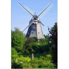 Windmühle auf Föhr