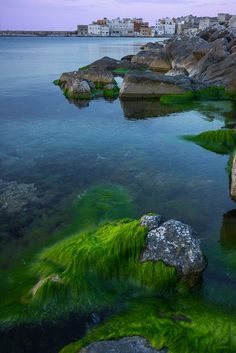 Sicily_Trapani_KevinMcNeal Photography