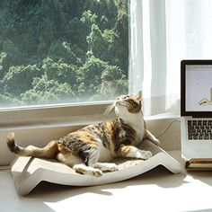 """Curved profile embraces your cat's body and provides a comfortable headrest 10"""" surface is wide enough to accommodate cats of all sizes Reversible for two different configurations and double the longevity"""