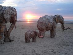 olifanten 14