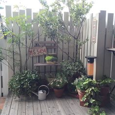 9 Young Clever Tips: Fence Plants Balconies cheap fence farm.Fence Decorations Tips fence planters tutorials. Small Fence, Front Yard Fence, Farm Fence, Low Fence, Brick Fence, Concrete Fence, Horizontal Fence, Fence Landscaping, Backyard Fences