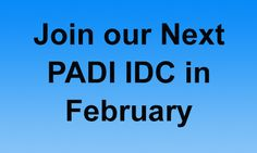 Join our Next #PADI IDC in February - become a scuba diving instructor!