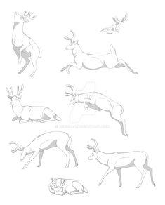 Deer Pose Set Commissions by Renigaed