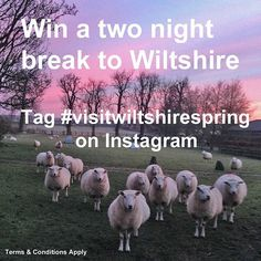 **Competition time** Fancy winning a two night self catering break at four star @churchfarmcotts near Bradford on Avon? Tag your Wiltshire images with #visitwiltshirespring for the chance to win this lovely prize. The competition is only valid on photos taken and uploaded to Instagram from 9 May - 30 June 2016. For full T&Cs please visit our website. #timeforwiltshire #igerswiltshire #competition #igersuk #Wiltshire