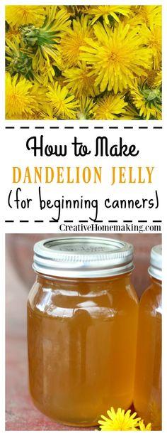 Easy recipe for canning homemade dandelion jelly. Tastes just like honey!