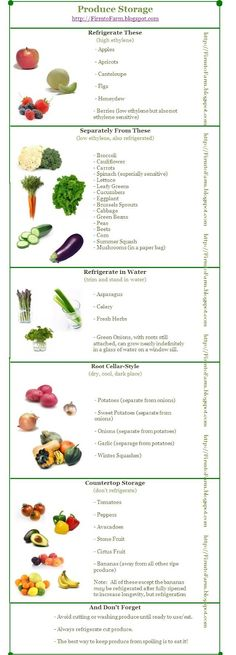 Great Produce Storage Tips for less food waste!  No Tomatoes in the Fridge: Produce Storage Guide