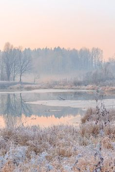 Best photography winter nature mornings Ideas – Photography, Landscape photography, Photography tips Photography Winter, Landscape Photography Tips, Landscape Photos, Amazing Photography, Nature Photography, Morning Photography, Photography Ideas, Aesthetic Photography Nature, Photography Accessories