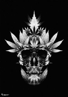 Vic Cannabis Wallpaper Weed Marijuana Tattoo Leaf Tattoos
