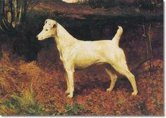 Arthur Wardle - smooth coated fox  terrier
