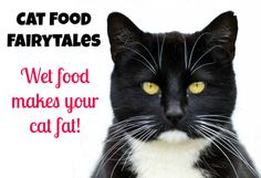 Catfood fairytales http://slimkitty.com/cat-food-fairytales-a-completely-untrue-story-about-canned-food/