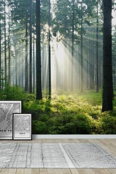 Enchanted forest Wall Mural - Wallpaper
