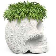 Qeeboo Mexico Skull Small Planter - Ivory (14.770 RUB) ❤ liked on Polyvore featuring home, outdoors, outdoor decor, white, outdoor patio decor, skull head planters, outside planters and outdoor garden decor