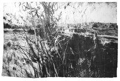 David Tress. - again would make a superb etching.