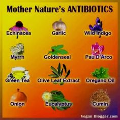 Antibiotic resistance is all over the news...best to be informed about alternatives.